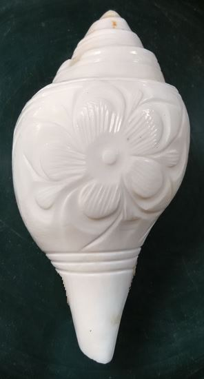 Picture of Jal Shankha (SBJSH8003)